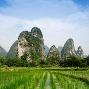 Pastoral scenery in guilin Stock Photos