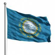 flag of south dakota - stock illustration