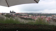 Stock Video Footage of Prague Castle From Petrin With Blossom Trees Under Umbrella
