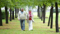 Romantic seniors - stock footage