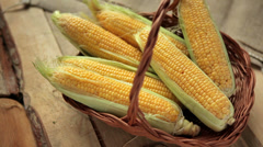 Mature corn grain Stock Footage