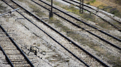 Empty railroad  tracks paning shoot- stock video Stock Footage