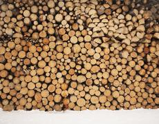 cords of firewood - stock photo