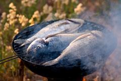 Sea bream fish grilling on bbq Stock Photos