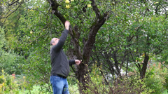 Man try cast off apple in garden episode 1 Stock Footage