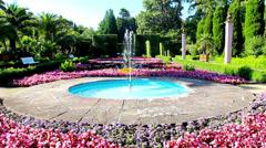 garden tropical HD - stock footage