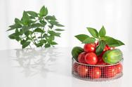 Stock Photo of Fresh vegetables and herbs
