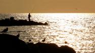 Stock Video Footage of Fisherman on the beach at sunrise, seagulls, reefs, sun