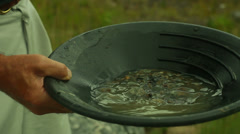 Gold panning pan Stock Footage