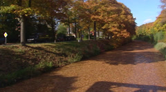 Autumn colors in oak trees along canal and road + pan Stock Footage