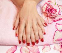 young woman hands with red manicure - stock illustration
