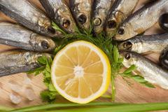 a composition with clupea herring - stock photo