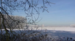 Rural area with frost and snow. Veluwe, The Netherlands - winter Stock Footage