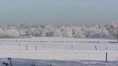 Car in small scaled frosty winter landscape Veluwe, The Netherlands Stock Footage