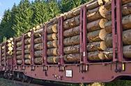 Stock Photo of transporting wooden logs