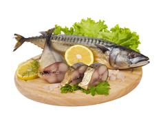 a composition with mackerel fish - stock photo