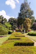 Royal Botanical Gardens, Peradeniya - stock photo