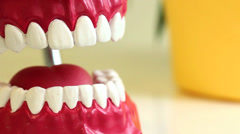 Teeth brush cleans toy jaw on table in dental surgery. Copyspace. Stock Footage