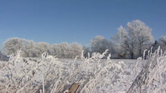 Frozen landscape in rural area + pan. Farm and shed at horizon Stock Footage