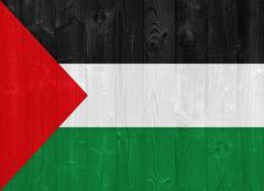 palestine flag - stock photo