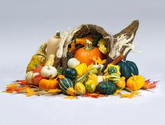 Cornucopia of Thanksgiving Stock Photos