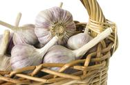 Stock Photo of large garlic bulbs in basket