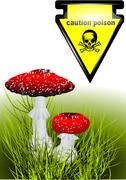 poisonous mushrooms - stock illustration
