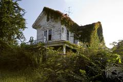 Old Abandoned Home - stock photo