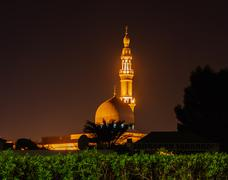 Stock Photo of night view of the arab mosque in dubai