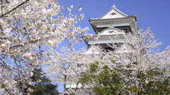 Ozu Castle and Cherry Blossoms, Ehime, Japan Stock Footage