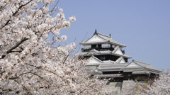 Matsuyama Castle and Cherry Blossoms, Ehime, Japan Stock Footage