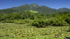 Imoriike Lake and Mt. Myoko, Niigata, Japan Stock Footage