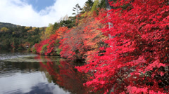 Autumn Leaves and Shirokomaike Lake, Nagano, Japan Stock Footage