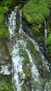 Waterfall, Nagano Stock Footage