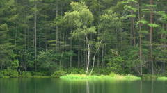 Mishaka Pond, Nagano Stock Footage