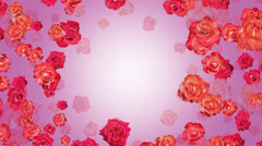 Roses CG animation Stock Footage