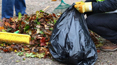 Man collects leaves in the fall episode 10 Stock Footage