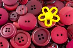 Red Buttons – Yellow Flower Stock Photos