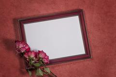 Vintage background with frame for photo and dry roses Stock Photos