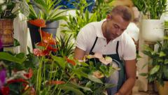 4of20 people in flower shop with florist and customer - stock footage
