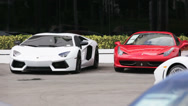 Stock Video Footage of Exotic cars