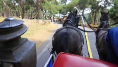 Horse Drawn Carriage Tour Stock Footage