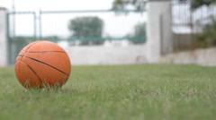 Orange color rubber ball rolling on green grass Stock Footage