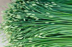 Chinese chive in local market, thailand Stock Photos