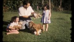 495 - new puppies crawl all over the sisters & dad - vintage film home movie - stock footage