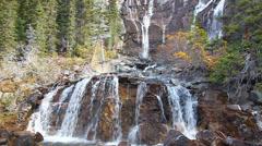 Tangle Falls Jasper National Park Stock Footage