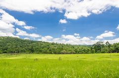 meadow and blue sky in national park - stock photo