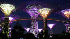 Singapore Gardens By The Bay night lights time laspe Stock Footage