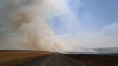 Grass fire (HD) k Stock Footage