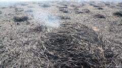 Dry Grass Smoldering and Smoking - stock footage
